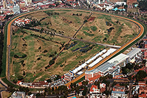 Greyville Horse Raceing near to The Riverside Hotel
